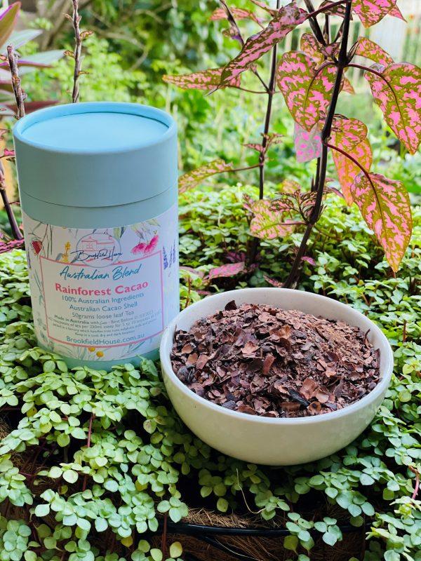 Rainforst Cacao